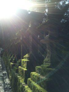 朝日に照らされる石灯籠