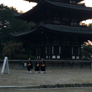 朝の興福寺 五重塔